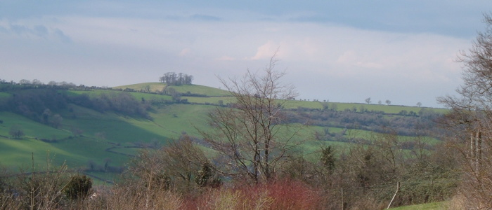 Spectacular Views over valley Primrosehill Woodland