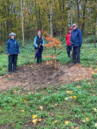 Planting trees in the Primrosehill Woodland