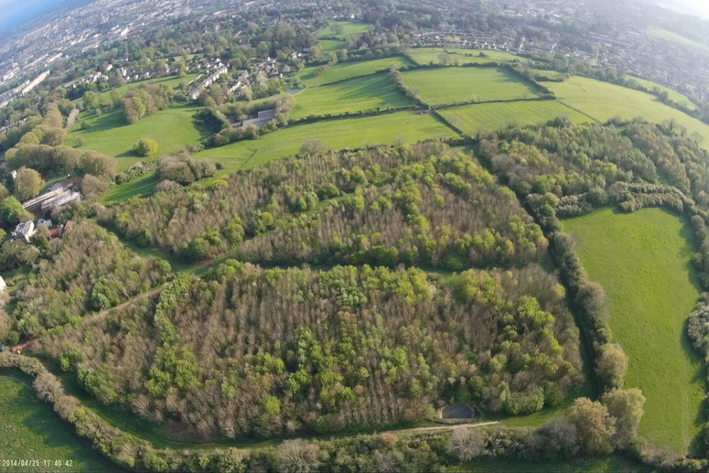 Overhead view of Primrose Hill Woodland
