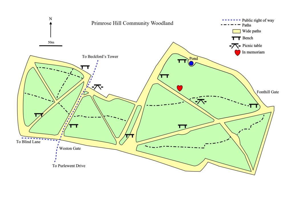 detailed map of Primrose Hill Woodland near Bath